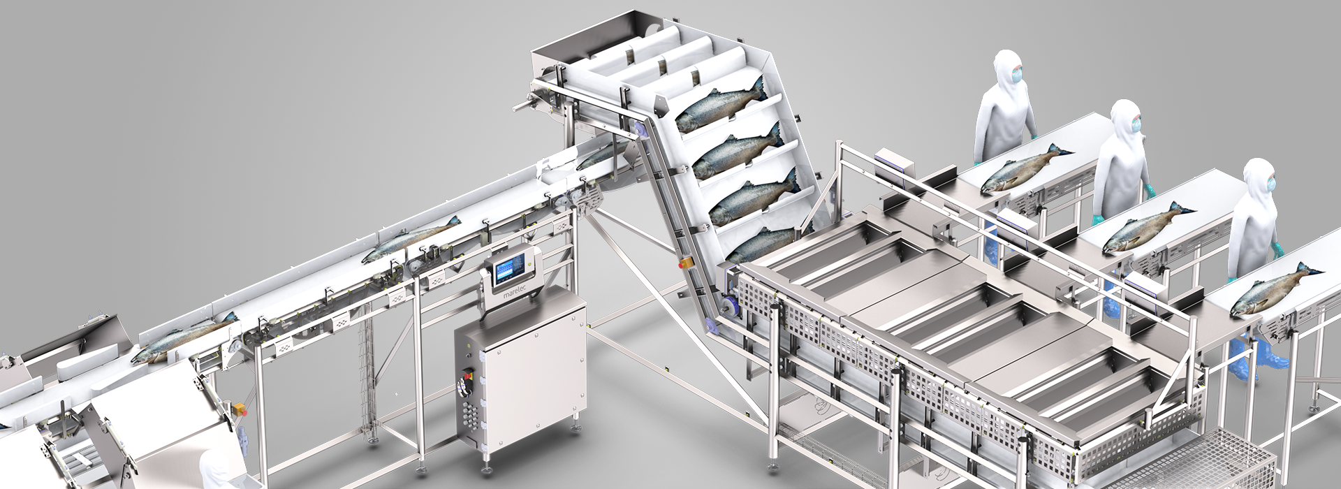MARELEC's fast and gentle salmon grader provides unparalleled accuracy with unlimited sorting capabilities.